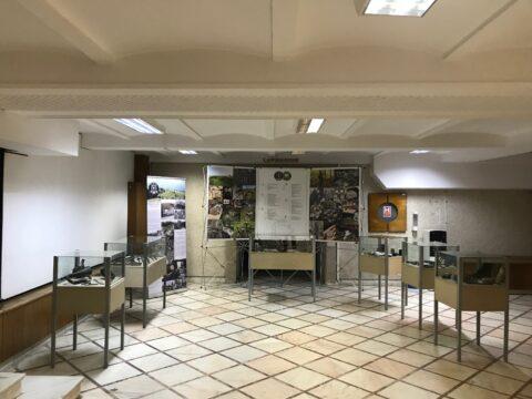 Muzeul_Militar_Bucuresti (5)